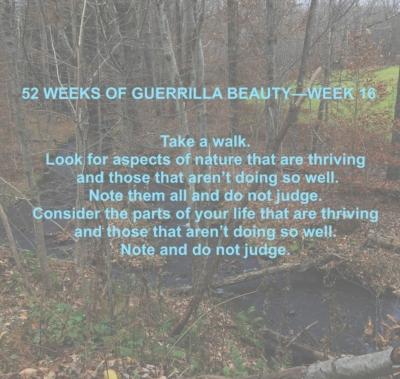 52 WEEKS—16