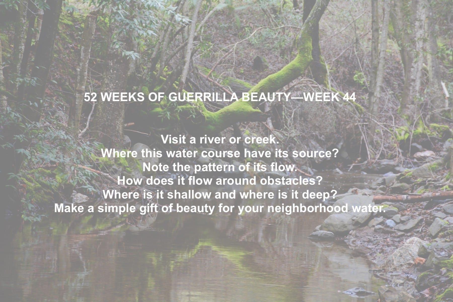52 WEEKS—44