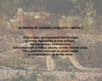 52 WEEKS—9