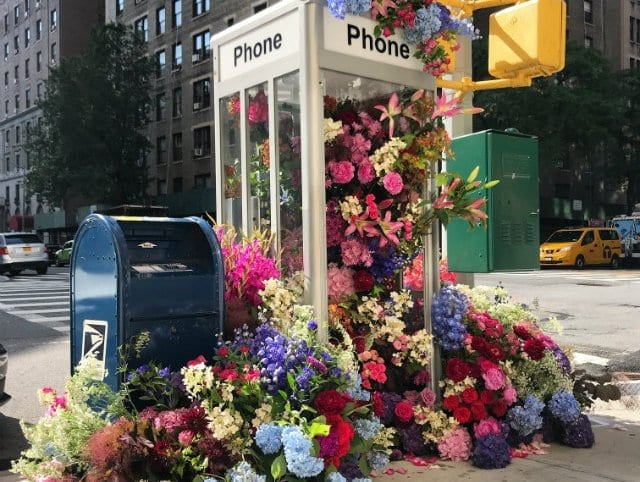 Flowers In Phone Booth