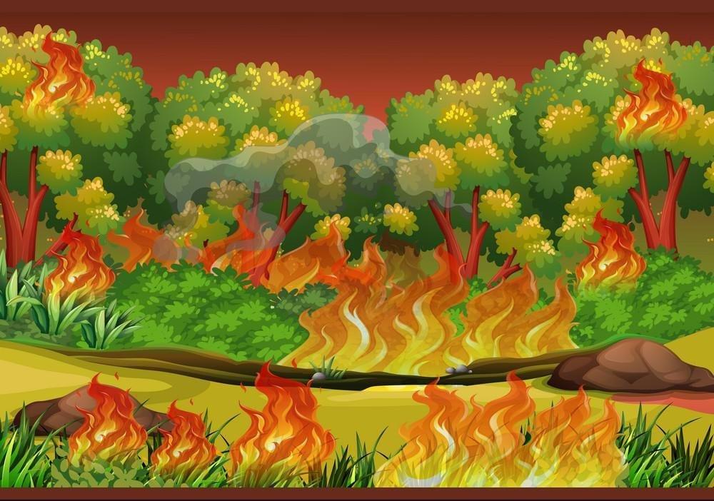 Forest Fire Design